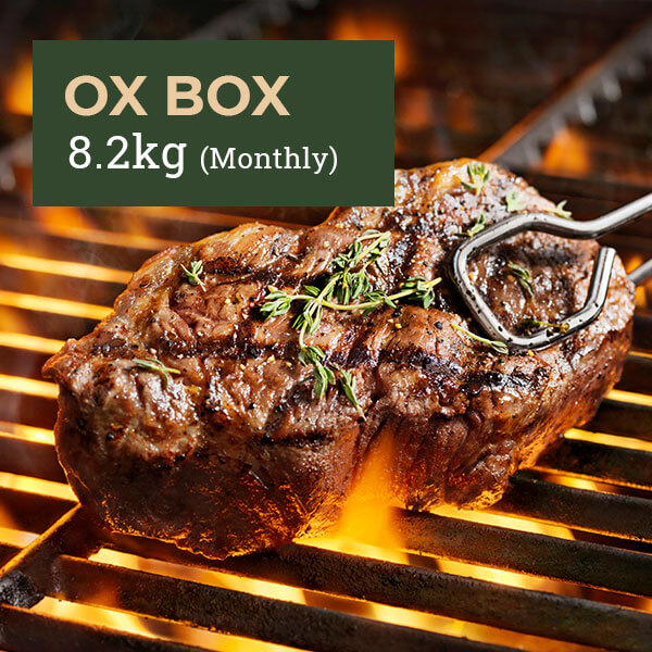 Free Range, Grass-Fed-Beef Box Ox Box 8kg Monthly